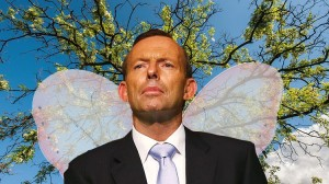 Abbott: no airy-fairy power targets.